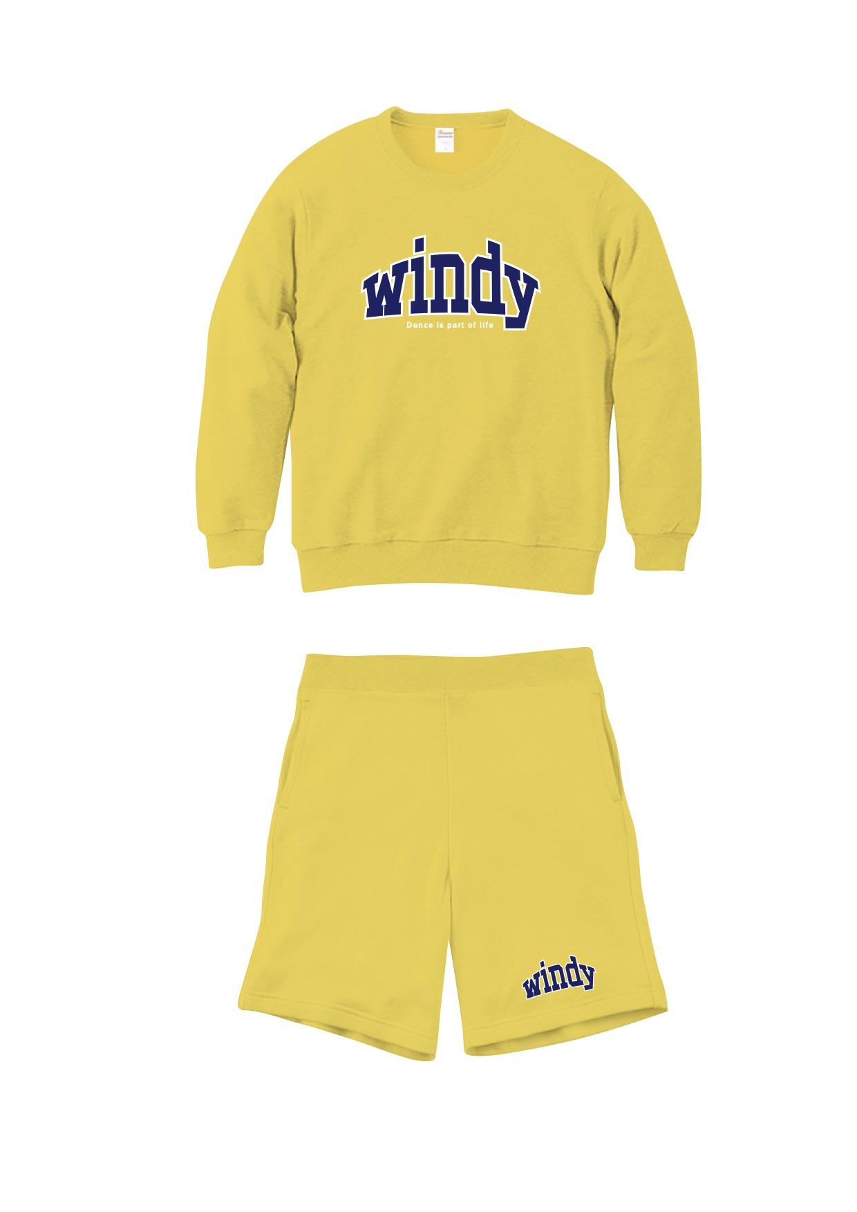 windy202004